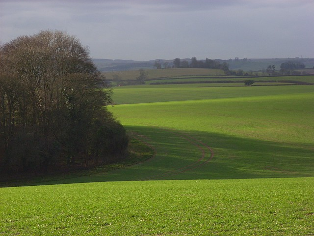 Farmland, Charminster
