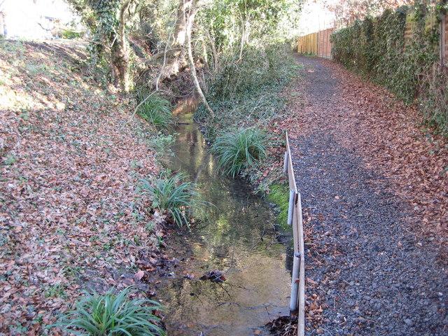 Hatfield Broad Oak: Mus Brook
