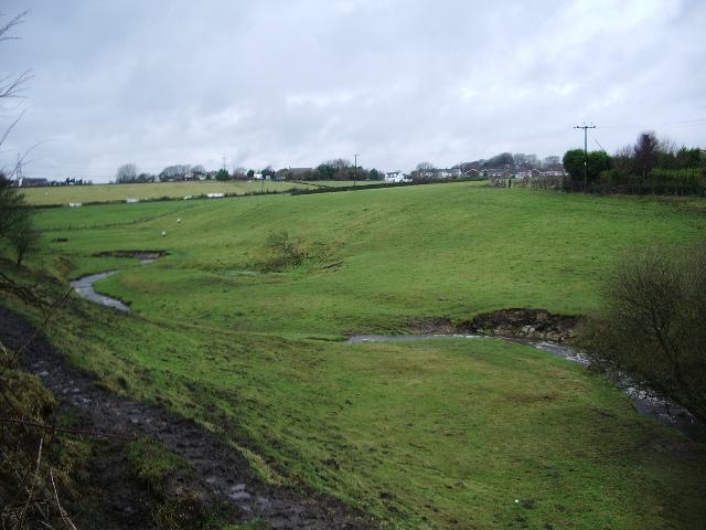 Lottice Brook