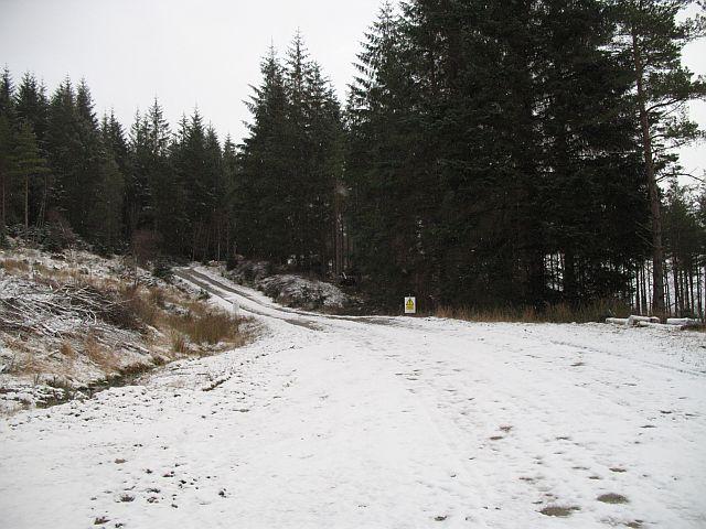 Road, Coille Druim Formalach