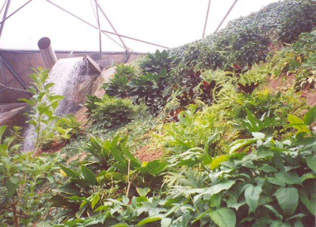 The top of the Waterfall, Eden Project, St Blaise CP