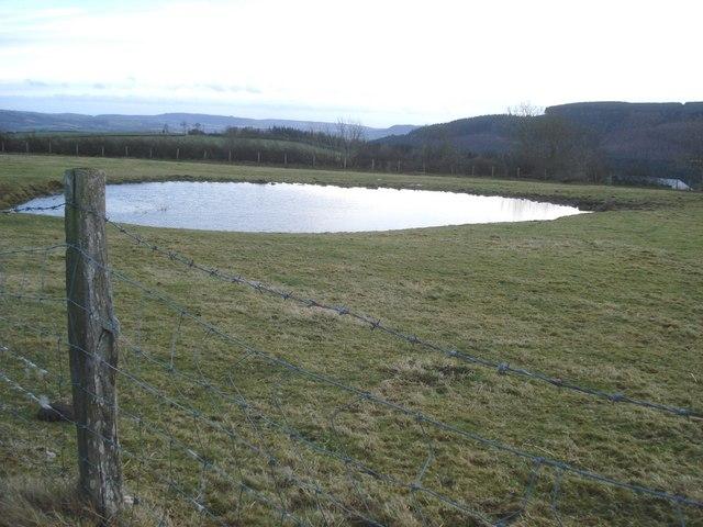 Dew pond at Llan Farm