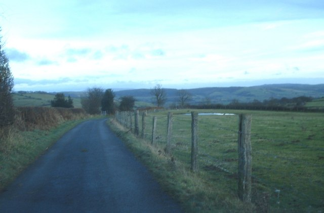 Lane near Llan Farm