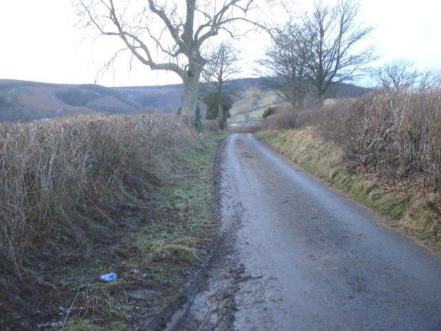 Lane to Cwm