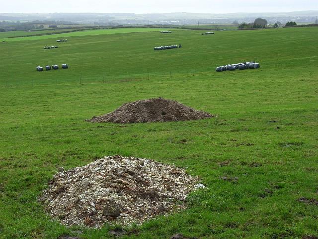 Farmland above Stinsford