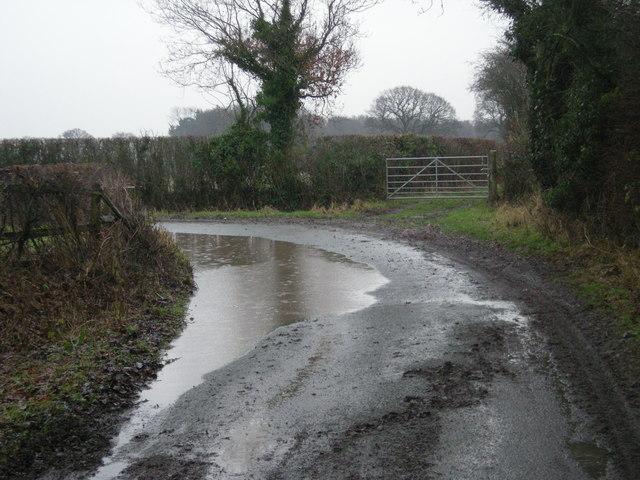 Big puddle in heavy rain
