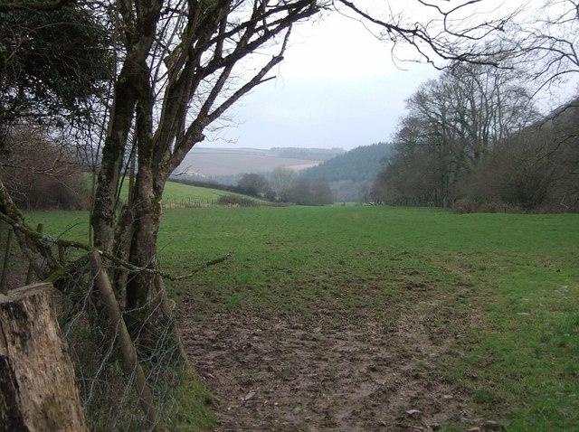 Torridge valley floor