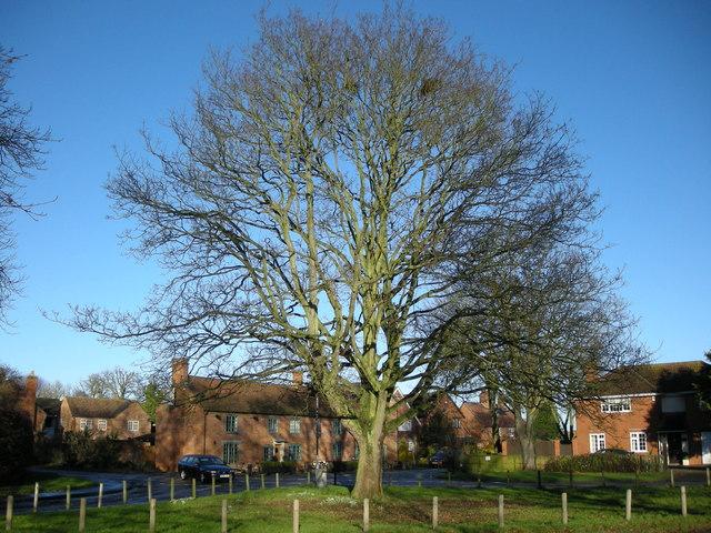 Long Itchington-Village Green
