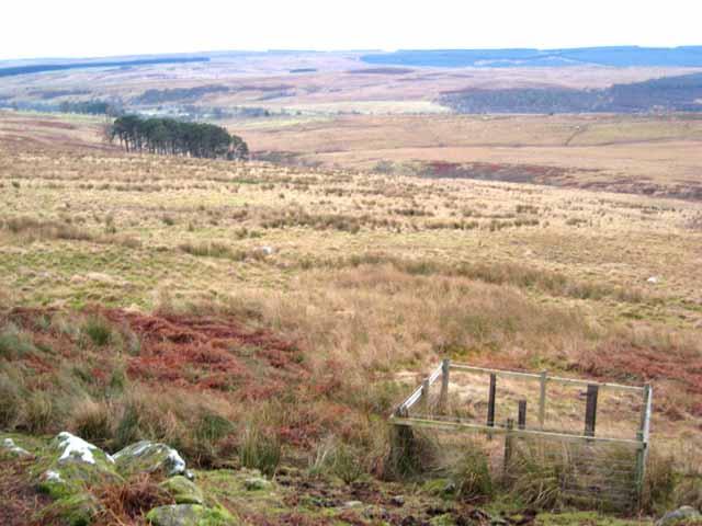 Valley of the Bellshiel Burn