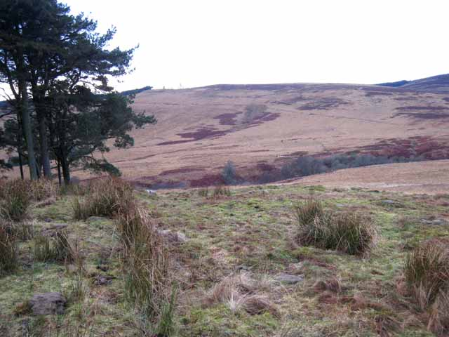 Valley of the Bellshiel Burn