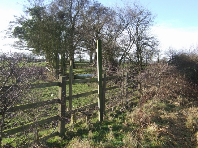 Footpath to Laney Green