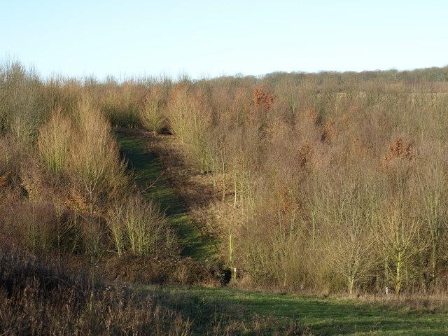 Brogborough Gateway Trail
