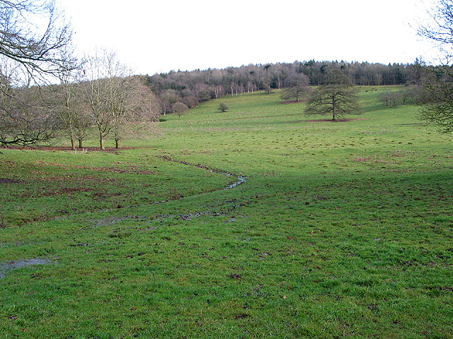 Looking east from The Southend, Ledbury Park