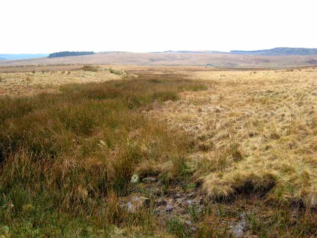 The Otterburn ranges seen from Bushman's road