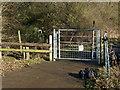 SP9540 : Metal gate by Dennis simpson