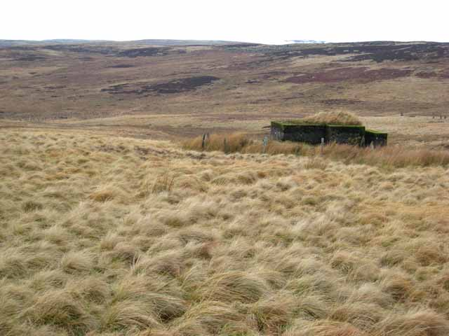 Pillbox and the valley of the Black Burn