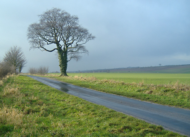 Dunflat Lane