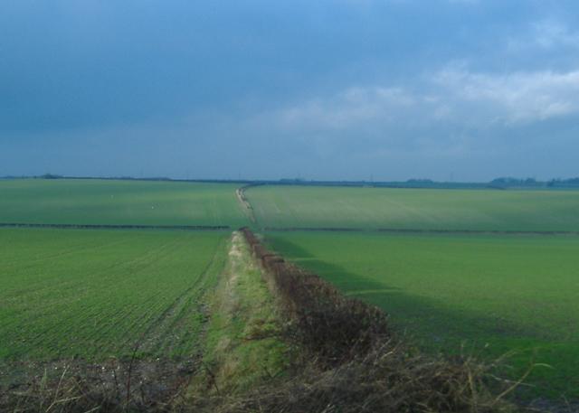 Risby fields