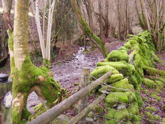 Cwm Bwch footpath