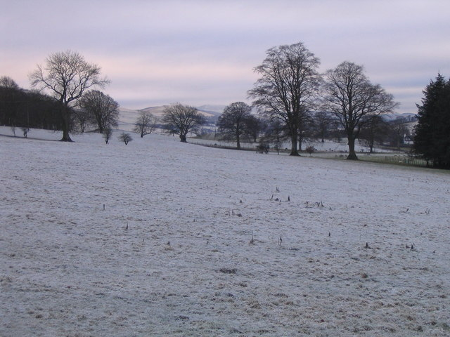 Frosty fields at Skirling