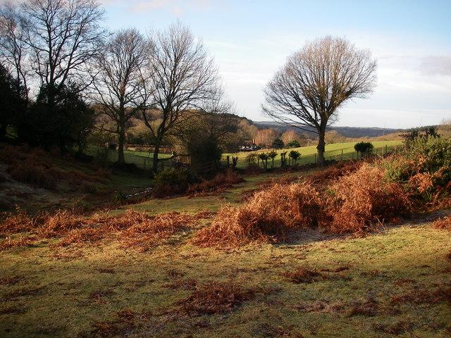 Blissford Hill