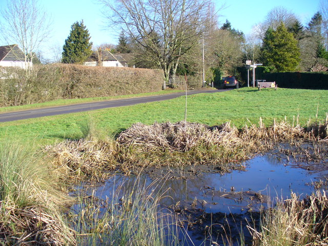 Pond at Farley Green