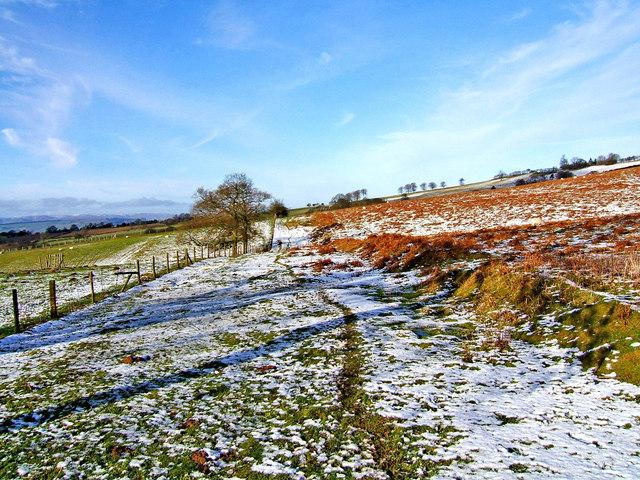 Jack Mytton Way in Winter