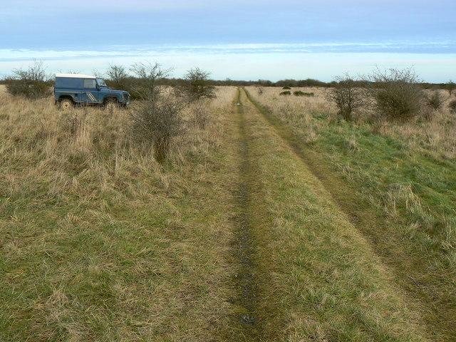 Track near Little Hill, Salisbury Plain