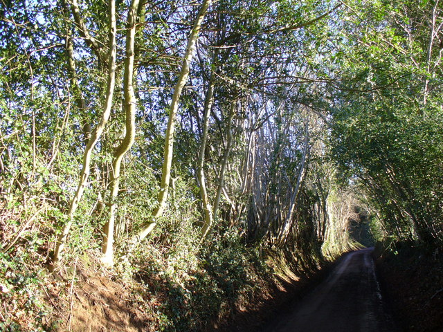 Lockhurst Hatch Lane