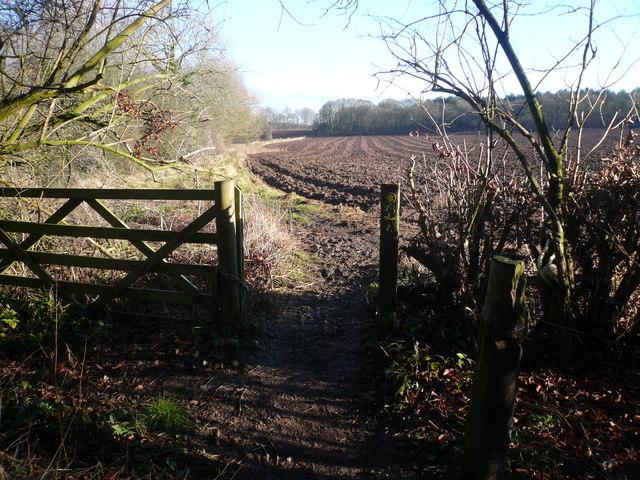 Leaving Roseland Wood