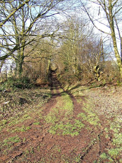 Bridleway, part of Jack Mytton Way, in Winter