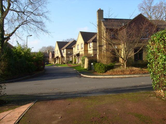 Bay Tree Close, Heathfield