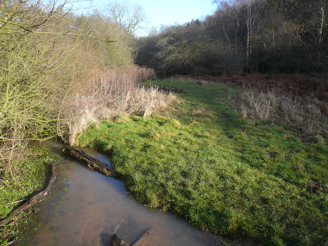 River next to Langwith Wood