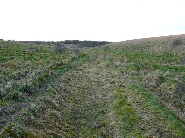 Track near Chirton Down, Salisbury Plain