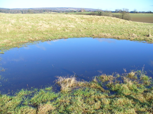 Pond by Hound House