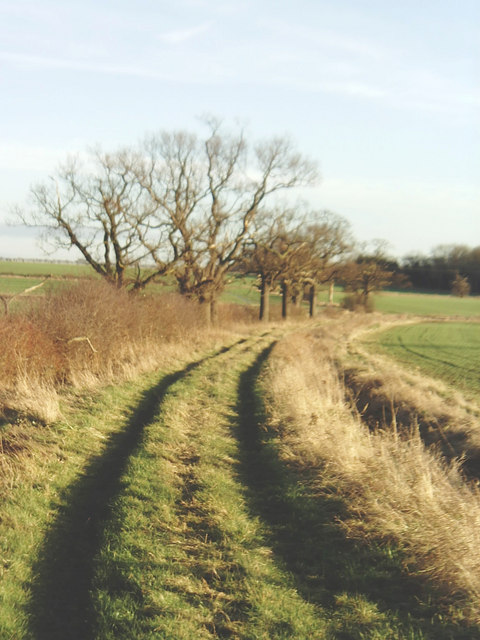Huntingdonshire countryside north of Hail Weston