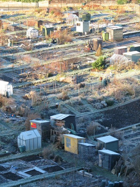 Allotments, Midmar