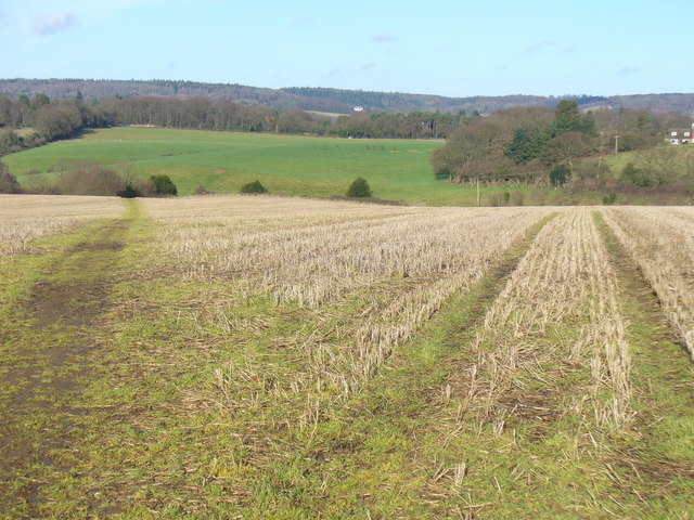 Footpath from Peaslake
