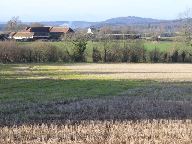 Fields by Lane End Farm