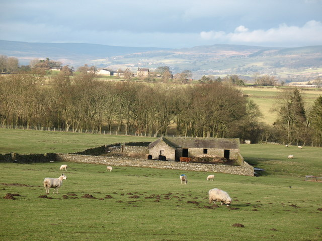 Barn and stock yard near The Rigg.