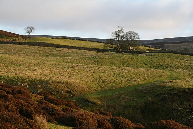 Agill House Farmland