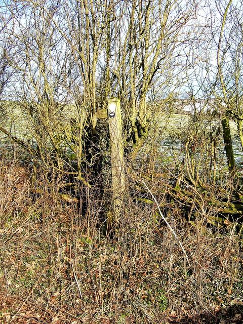 Waymarker post on Jack Mytton Way