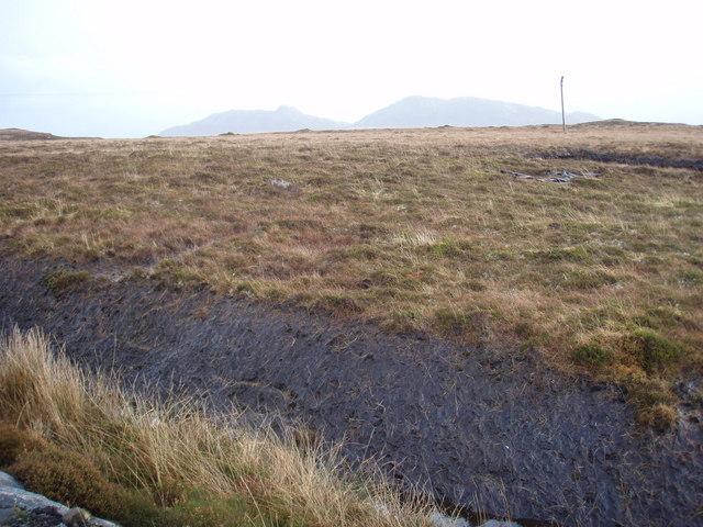 Grassy Moorland