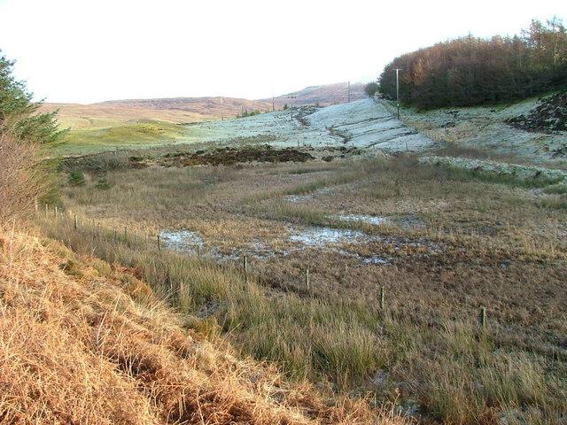 Boggy Ground beneath Uig Forest