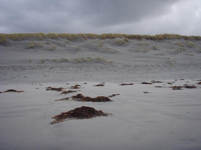 Baile Sear Dune