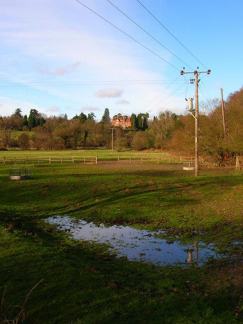 Field, Birchden Forge