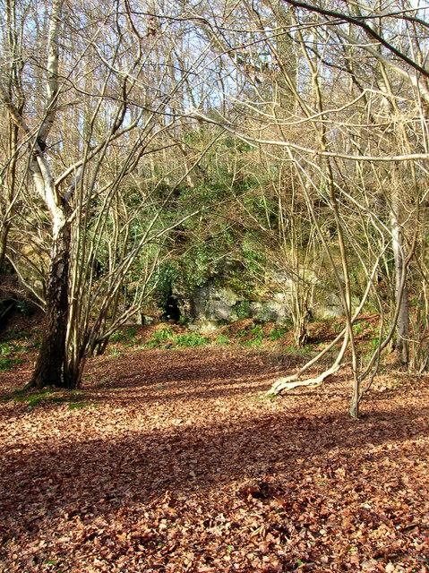 Sandstone Outcrops, Birchden Wood