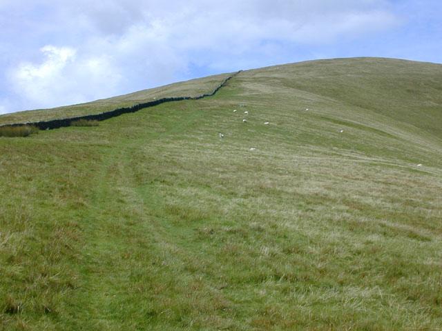 Braich steepens