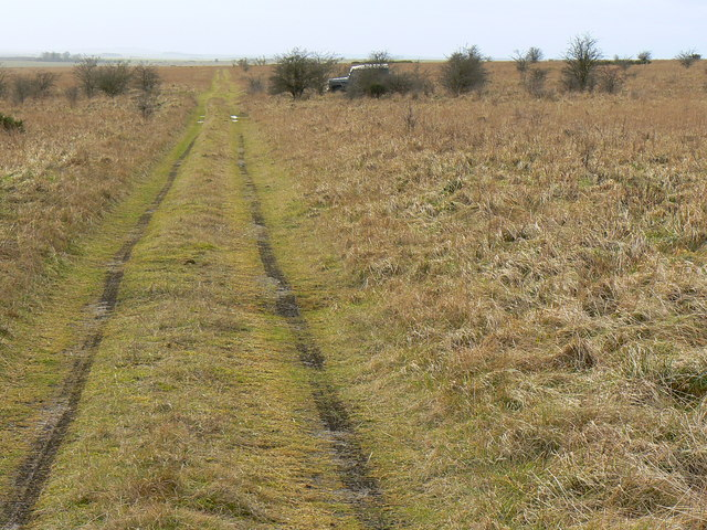Track from a byway, near Chirton Gorse