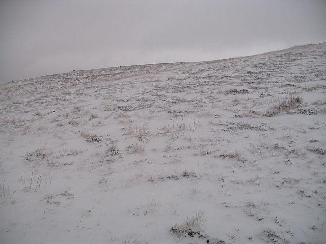Southern slopes of Druim Fada